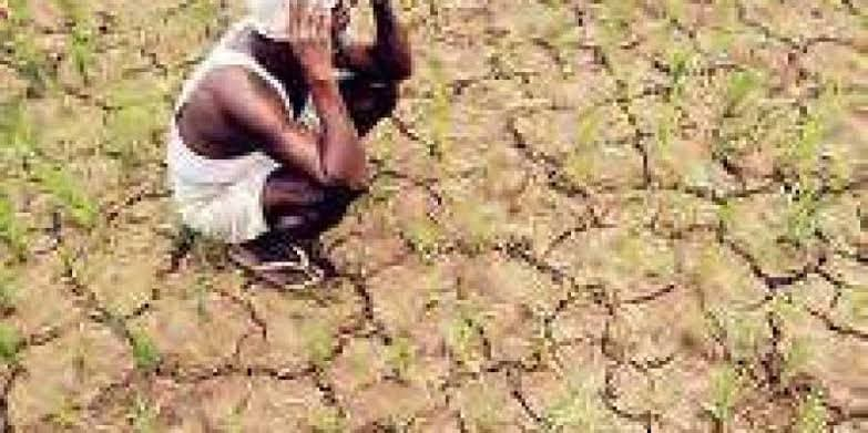 Government will bring detailed plan for 100 districts facing water crisis