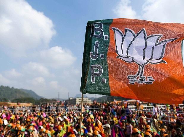 BJP sweeps zilla polls